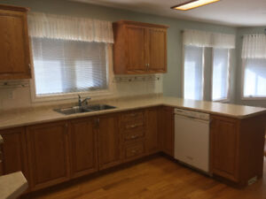 Kitchen Caninets and Counter Top