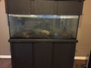 90 gallon tank and stand  London Ontario image 1