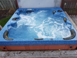 BEAUTIFUL PRE-OWNED FAMILY HOTTUB