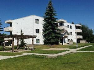 Renovated Millwoods Bachelor Apartment