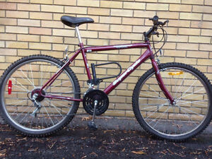 Great bike for sale at a great price!