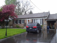 3 Bedroom Bungalow House Rent - Main Floor -Markham and Eglinton