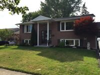 Welland family home for rent