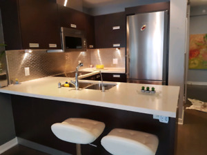 luxury furnished 1+1 bedroom cond for rent 8km to downtown Tor