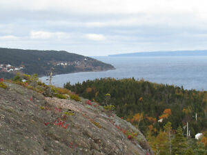 JUST LISTED…PRIVATE ESTATE, AWESOME OCEAN VIEWS…AVONDALE. St. John's Newfoundland image 5