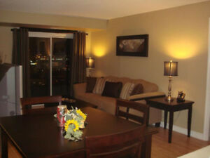 Furnished Two Bedroom Suite in Square One, Mississauga