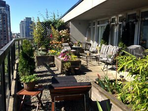 Penthouse Sublet in Yaletown w 600+sq/ft patio