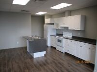 2 Bdrm Downtown Apt Available March 1 st