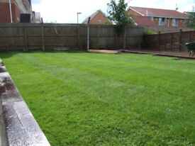 Garden services Fencing,slabbing,patios ,garden cleaning and maintenance,Turfing