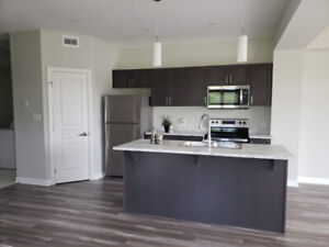 3 B/R HOUSE FOR RENT IN KINGSTON - Best area!!!!