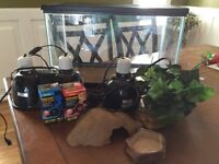 Complete equipment for reptile