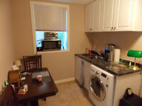 One Bedroom Walkout Suite in Okotoks with Lake Privileges