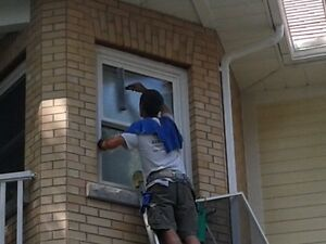 Window Cleaner looking for part time employee Stratford Kitchener Area image 3