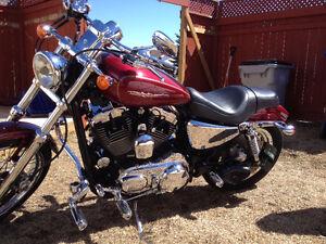Harley Davidson Custom Sportster