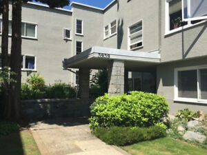 Spacious 1 BR Avail July 1