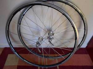 Dura Ace Wheels needs 1 spoke Cleveland Redland Area Preview