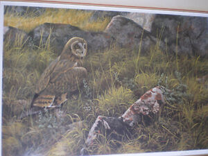 "Robert Bateman Signed Limited Edition Print - ""Short Eared Owl"" Kitchener / Waterloo Kitchener Area image 5"