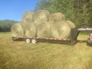 Hay for animals!