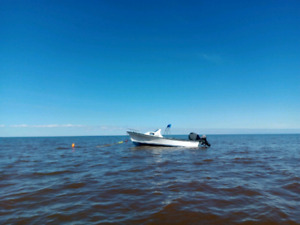 19Ft Seabreeze Cuddy
