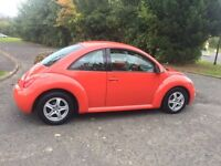 VW beetle must be seen ideal present
