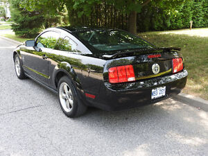 2006 Ford Mustang pony pack rare 5speed