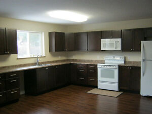 Newer HOME in Falkland BC Right Downtown