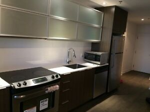 NEW FURNISHED STUDIO CONDO FOR RENT