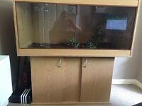 Large 4 foot vivarium with underneath storage
