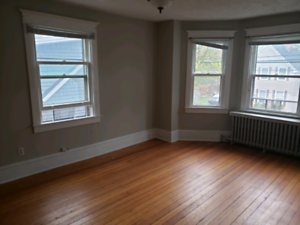 Newly Renovated One Bedroom Apt for rent