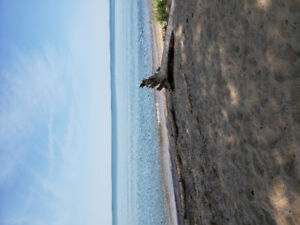 Vacation Rental Leke Erie w/Private Sandy Beach