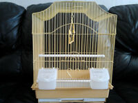 baby budgies and cages