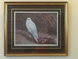 CHRISTINE MARSHALL PRINT - GRYFALCON - FRAMED & MATTED