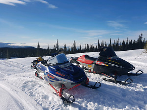 2001 Polaris RMK 800 & 2003 RMK 800 Vertical edge