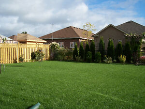 Residential Mowing Starting At $65, Cambridge Kitchener Area image 3