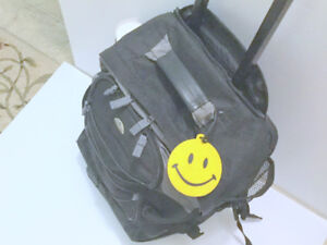 (Backpack) 20'' Rolling Luggage Business Travel (Free Charm)