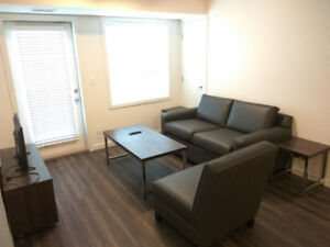 Summer and Winter Terms Walk to UBCO- 2bed2bath apartment
