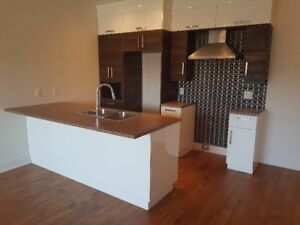 New Luxurious 2 Bedroom Condominium Henri Bourassa Montreal Nord