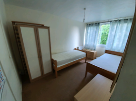 Amazing TWIN ROOM available NOW!