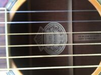 Rare Washburn D47S Acoustic guitar