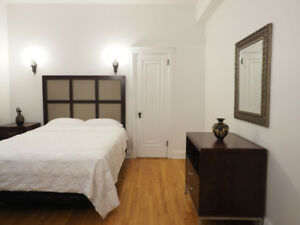 FURNISHED, SPACIOUS 2 BDRM APT ACROSS FROM MCGILL