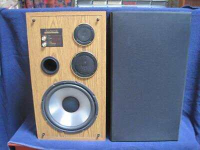 Acoustic Monitor (Vintage Pair of Acoustic Studio Monitor 10