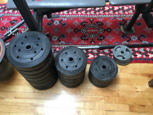 Poids et bench - Weider - bench and weights