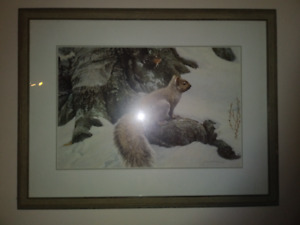 squirrel by Robert Bateman