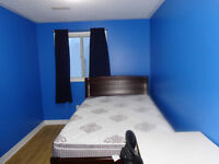 Room Available for a Student or a Recent Working Graduate