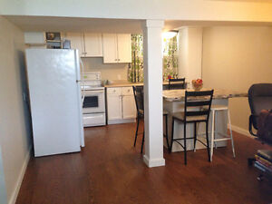 Furnished Basement Suite in Old Lakeview - $1200