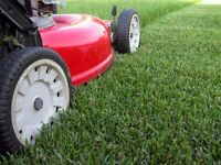 Grass cutting services - free quotes