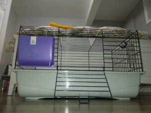 Cage 80.00$