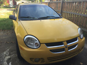 2003 Yellow Dodge Neon Windsor Region Ontario image 4