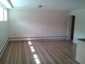 3 1/2 Dorval South Lower Duplex Apartment