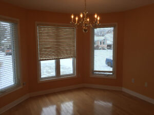 Main level of house for rent